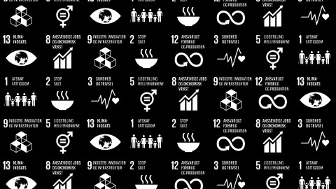 Delfi Technologies and the UN's 17 World Goals